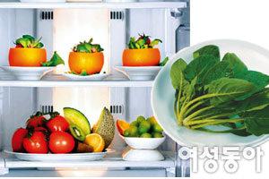 냉장고 속 재료 싱싱 보관법