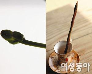'운동 마니아' 김혜정 건강관리법 & 싱글라이프 공개
