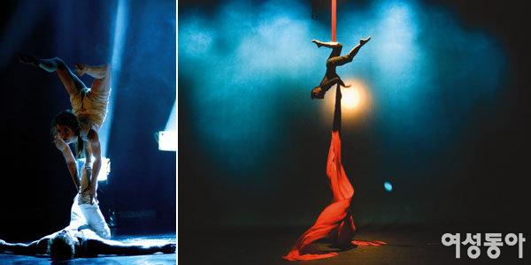 네비아 Nebbia Circus