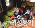 서울시 강서구 방화1동 김나영씨네