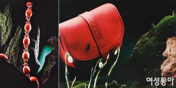 대한민국에서 가장 비싼 광고사진으로 이름난 사진작가 준초이