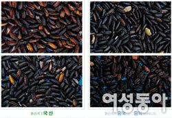 국내산 vs 중국산  농수산물 구분법
