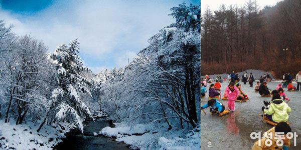 가족과 함께 떠나요~         3색 겨울 테마여행