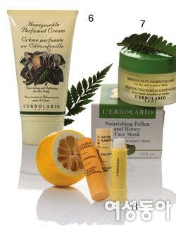 Natural Skin Therapy, 엘보라리오