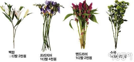 1만원으로 10만원 꽃다발 따라잡기
