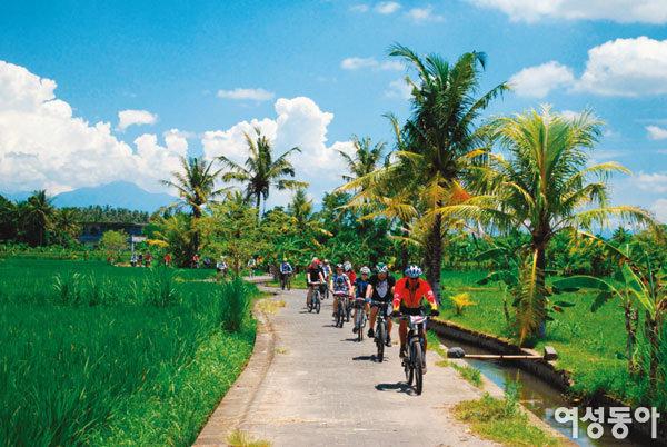 인도네시아 Bali & LomBok