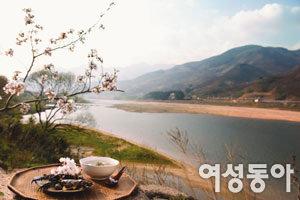 꽃잎 흩날리는 섬진강 오백리 따라 맛이 흐른다