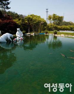 반달곰 만날 수 있는 자연 속 휴식공간 베어트리 파크