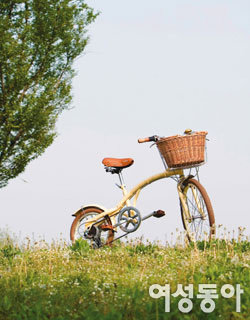 자전거를 타자