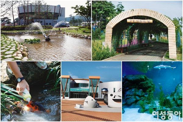 2009 울진세계친환경농업엑스포