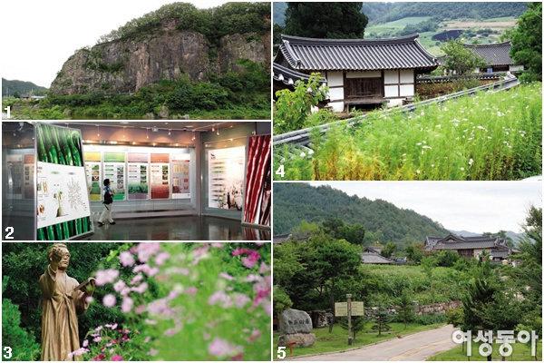 경북 영양 농장 체험