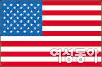 공·사립 외에도 다양한 대안 있는 미국