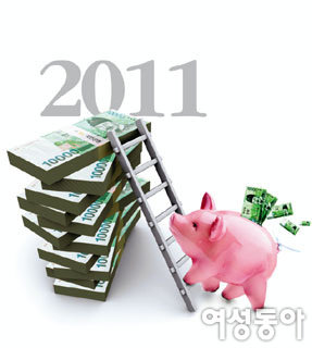 2011년 경제 전망 & 성공투자전략