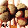 가을 과일 · 채소 고르기 매뉴얼 #2