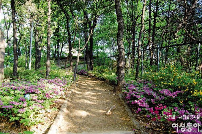 이른 가을 만끽하는 걷기 여행