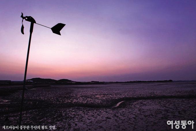 국토 서남단 전남 무안