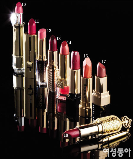 브랜드 시그너처 Lipstick