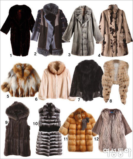 It's the Fashion, Fur