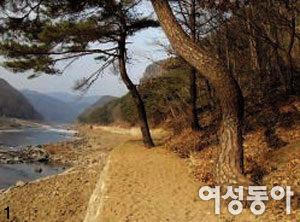 백두대간 허리에 걸린 경북 봉화
