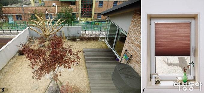 아파트와 바꾼 살구나무집
