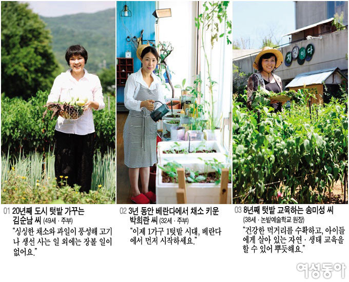 3인 3색 도시 농부 이야기