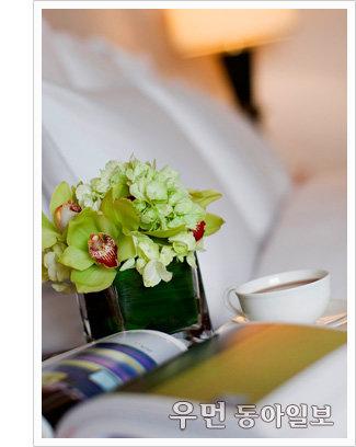 미리 만나는 싱그러운 봄! 호텔 스프링 패키지&프로모션 4