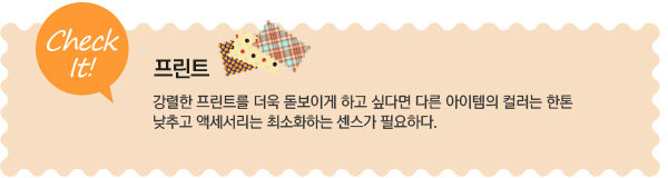 2013 스프링 시즌! 패션 트렌드 Ⅲ. 프린트로 물든 경쾌한 봄 패션!
