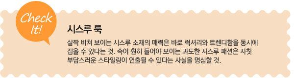 2013 스프링 시즌! 패션 트렌드 Ⅳ. 럭셔리와 트렌디함을 동시에 잡자! 시스루 룩