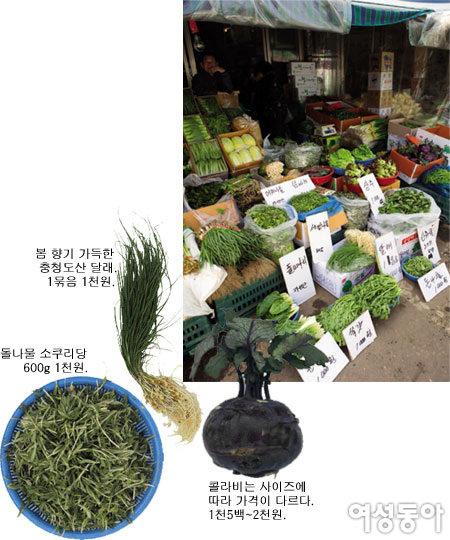 요리 전문가 박연경 가락동농수산물시장을 가다