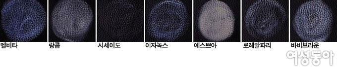 자외선 차단제 비교 분석