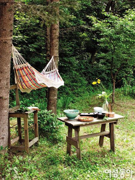 양은숙이 자연 속에 차린 그린 테이블
