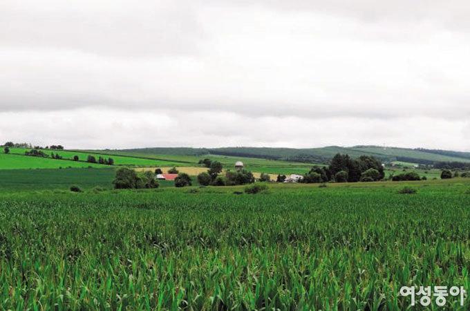 자연 미인의 진수 보여주는 '낙농 왕국' 도카치