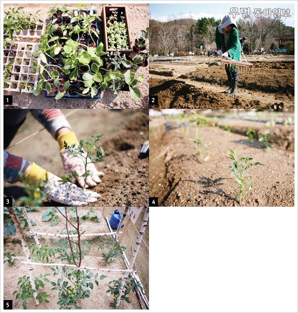 살림달인 띵굴마님이 알려준 흙 살림 시작하는 법