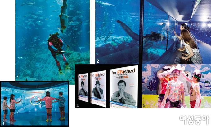 홍콩 오션파크 '상어의 신비'