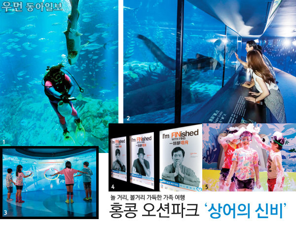 놀 거리, 볼거리 가득한 가족 여행~ 홍콩 오션파크 '상어의 신비'