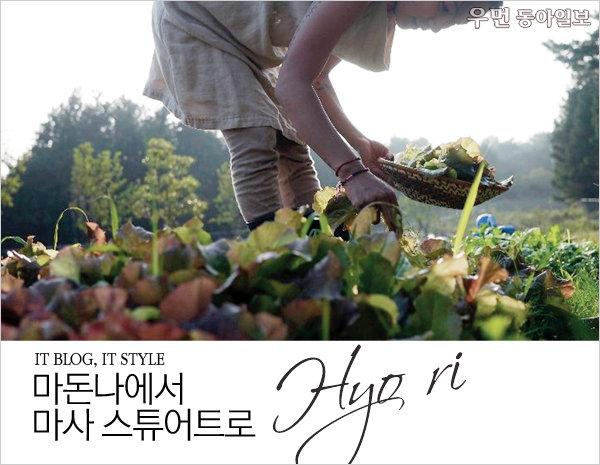IT BLOG, IT STYLE~ 마돈나에서 마사 스튜어트로, 효리(Hyo ri)