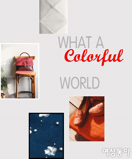 WHAT A Colorful WORLD