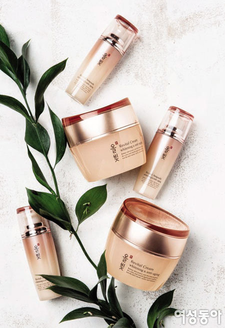Everyday Perfect Skin