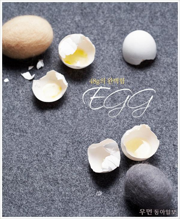 48g의 완벽함! Egg