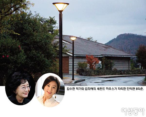 서울 떠나 제주에 투자한 스타들