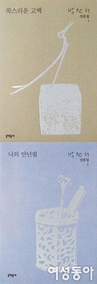 그리운 이름  박완서 문학동네 산문으로 만나다