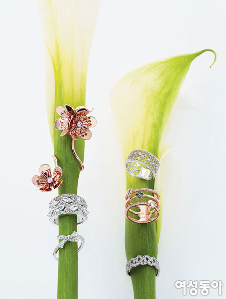 장갑 벗으니, 봄처럼 고운 반지들