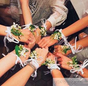 스타 결혼식 단골 손님 '하미모'의 정체