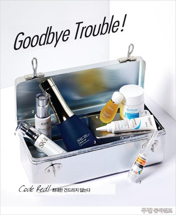 Goodbye Trouble!
