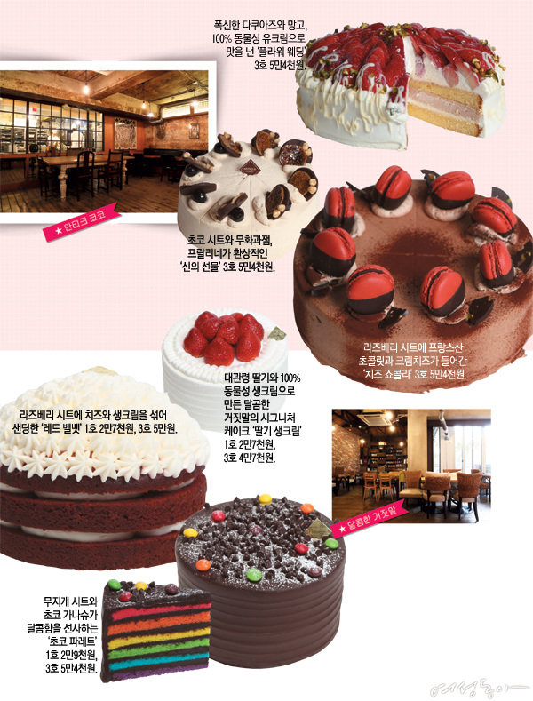 Holiday Cake Shop 8