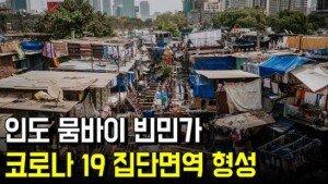인도 뭄바이 빈민가, 코로나19 집단면역 형성