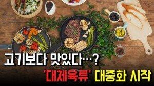 '미래의 먹거리' 대체육류…대중화 시작?