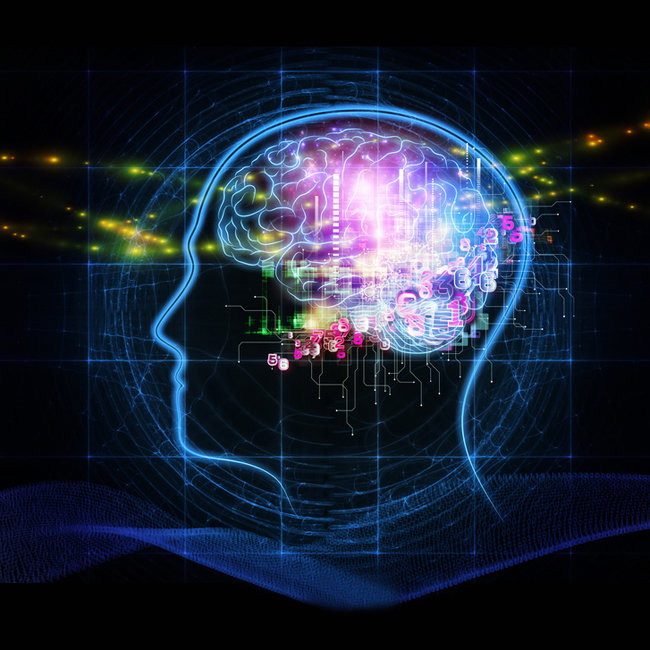뇌 해킹해 생각 도청… 인간에게 디도스 공격도 가능
