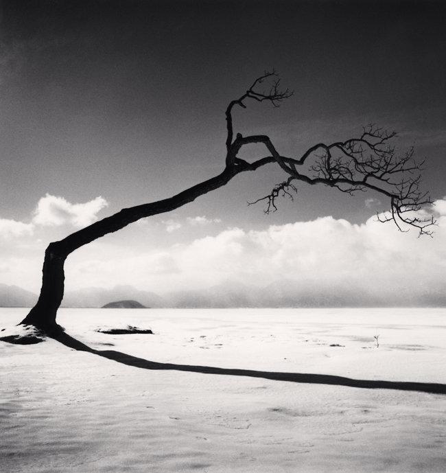 Kussharo Lake Tree, Study 10, Kotan, Hokkaido, Japan. 2005 ⓒ Michael Kenna