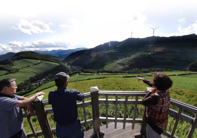 전망대에 서면 배추밭 너머로 탁 트인 마을 전경이 펼쳐진다.
